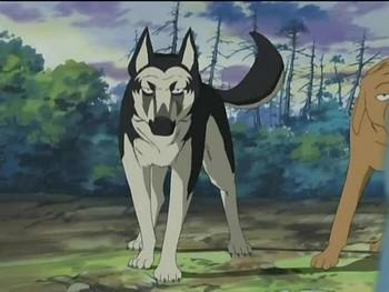Кадр 2 аниме Легенда о Серебряном Клыке: Падающая звезда Гин