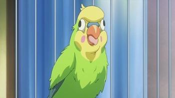 Кадр 3 аниме Торадора!