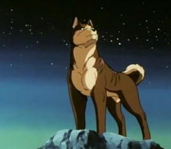 Кадр 0 аниме Легенда о Серебряном Клыке: Падающая звезда Гин